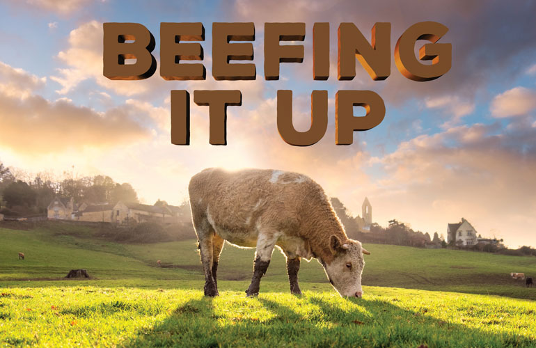beefing it-up-image-of-a-cow-grazing