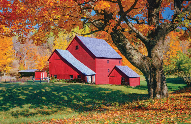 image of a farmhouse in fall season