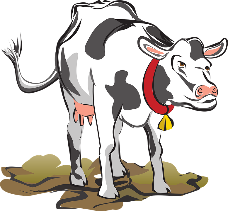 illustration-of-a-dairy-cow