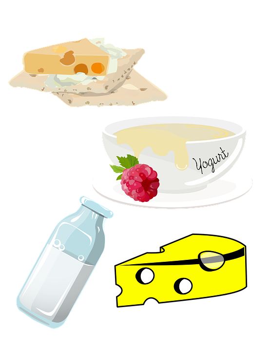 image-of-dairy-food-group