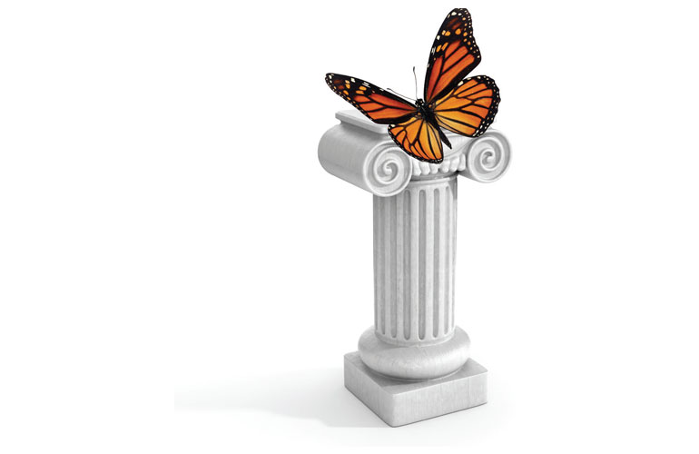 butterfly-on-a-pillar