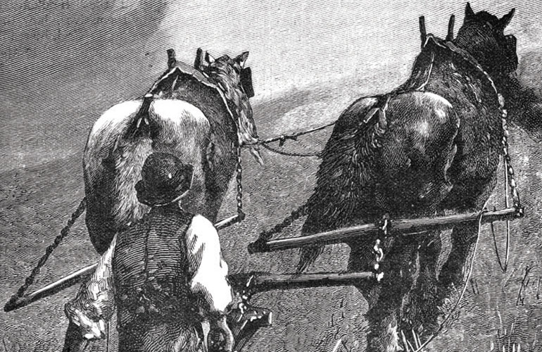drawing-of-man-and-two-draft-horses