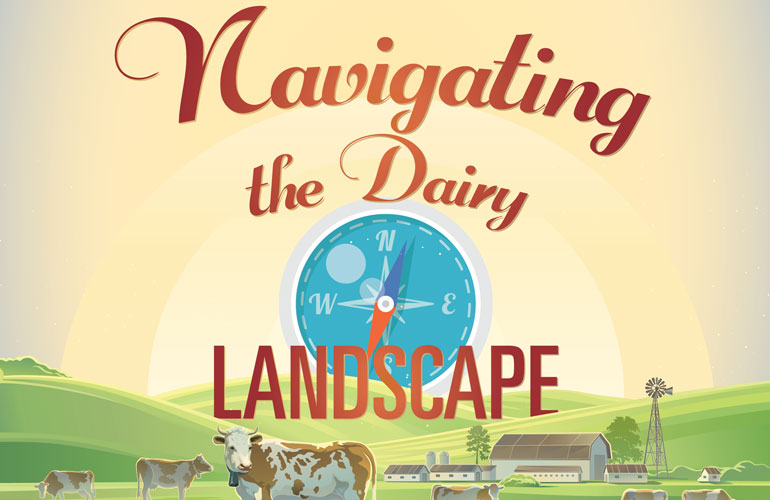 navigating-dairy-landscape-image-dairy-cows