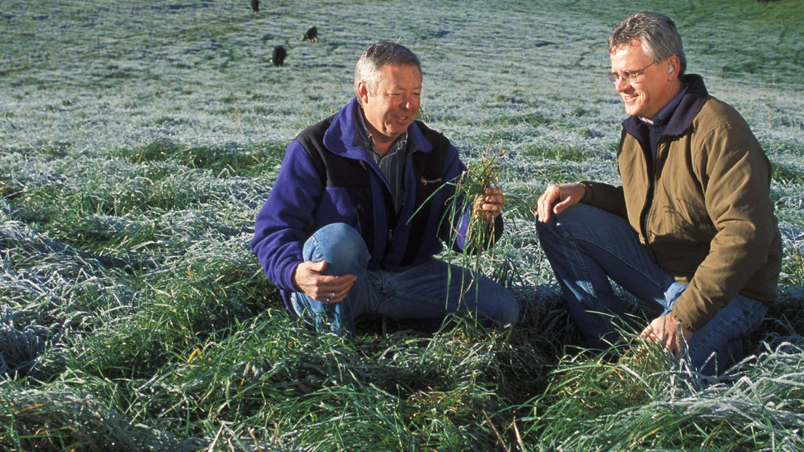 USDA researchers examine frost-stressed forage in West Virginia