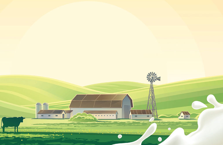image-of-a-dairy-with-a-splash-of-milk-and-a-cow