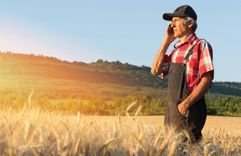 saving-crop-insurance-for-now