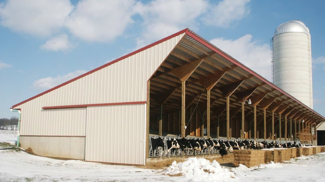 This 216-foot Virginia-style heifer barn with 16 sloped pens and two storage bays is located at the Neal King farm in Cochranville, Pa.